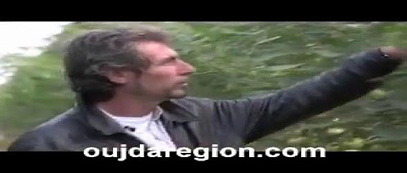 فيديو نادر عن إقليم بركان