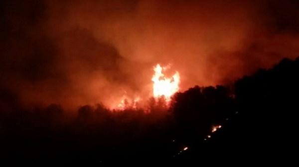 الوقاية-المدنية-ببركان-تسيطر-على-حريق-غابة-تافوغالت-2