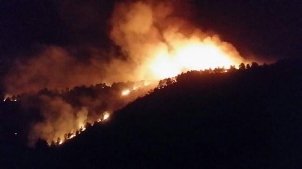 الوقاية-المدنية-ببركان-تسيطر-على-حريق-غابة-تافوغالت-4